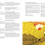 Amazing #1 - L'œil / Anna Faivre d'Acier · Thomas Desvignes - Café Creed, 2014